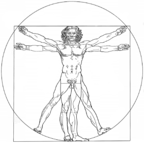 vitruvian-man-leonardo-da-vinci-illustration-drawing-created-based-records-architect-vitruvius-isolated-32987994